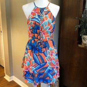 NWT: PARKER DRESS